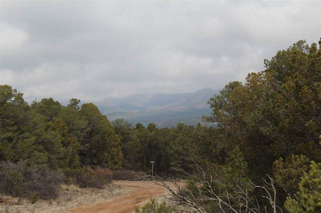 Lot 9 Mountainaire Dr T#4, Timberon, NM 88350 (MLS #162498) :: Assist-2-Sell Buyers and Sellers Preferred Realty