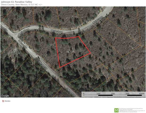 Movac Loop Gc8, Timberon, NM 88350 (MLS #162536) :: Assist-2-Sell Buyers and Sellers Preferred Realty