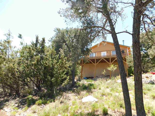 4 Hawk Hill Rd, High Rolls Mountain Park, NM 88325 (MLS #162572) :: Assist-2-Sell Buyers and Sellers Preferred Realty