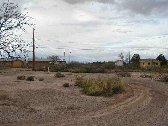 1206 Mescalero St, Alamogordo, NM 88310 (MLS #162592) :: Assist-2-Sell Buyers and Sellers Preferred Realty
