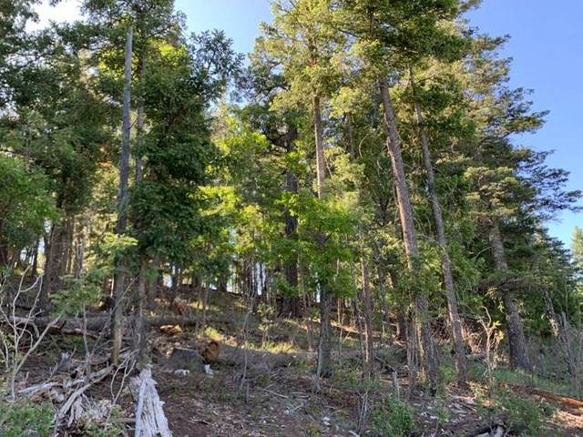 702 Shells Ln, Cloudcroft, NM 88317 (MLS #162644) :: Assist-2-Sell Buyers and Sellers Preferred Realty