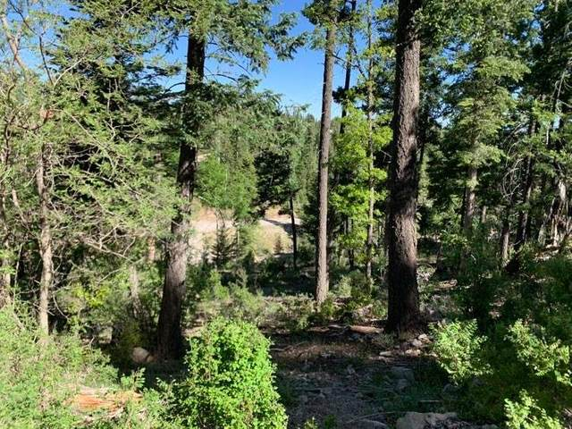 000 Blanca Vista, Cloudcroft, NM 88317 (MLS #162645) :: Assist-2-Sell Buyers and Sellers Preferred Realty