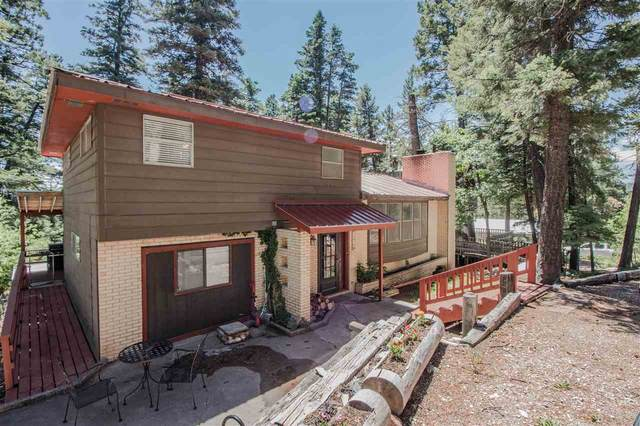 1310 Apache, Cloudcroft, NM 88317 (MLS #162648) :: Assist-2-Sell Buyers and Sellers Preferred Realty
