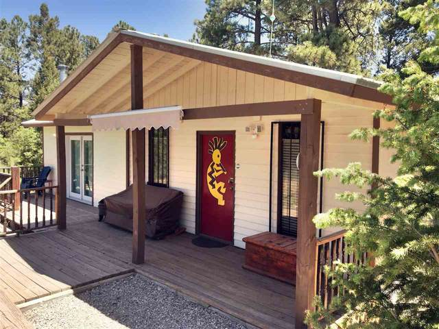 41 James Canyon Hwy, Cloudcroft, NM 88317 (MLS #162650) :: Assist-2-Sell Buyers and Sellers Preferred Realty