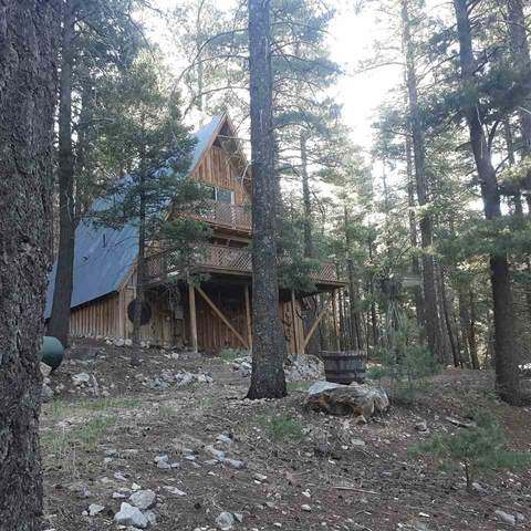 15 Canyon Rd, Cloudcroft, NM 88317 (MLS #162655) :: Assist-2-Sell Buyers and Sellers Preferred Realty