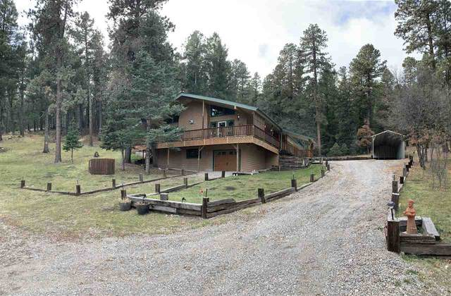 26 Spring Water, Cloudcroft, NM 88317 (MLS #162660) :: Assist-2-Sell Buyers and Sellers Preferred Realty