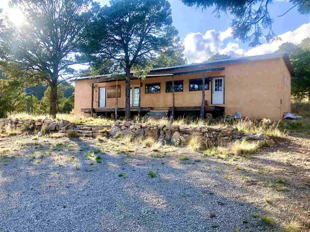 134 Rocky Trail Rd, Timberon, NM 88350 (MLS #162662) :: Assist-2-Sell Buyers and Sellers Preferred Realty
