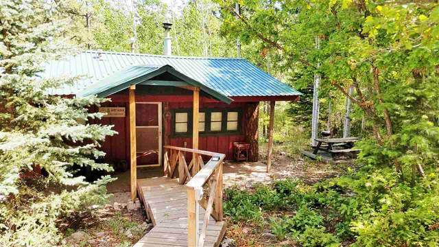 901 Panther Ave, Cloudcroft, NM 88317 (MLS #162663) :: Assist-2-Sell Buyers and Sellers Preferred Realty