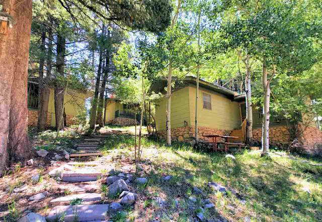 400 Columbine Blvd, Cloudcroft, NM 88317 (MLS #162667) :: Assist-2-Sell Buyers and Sellers Preferred Realty