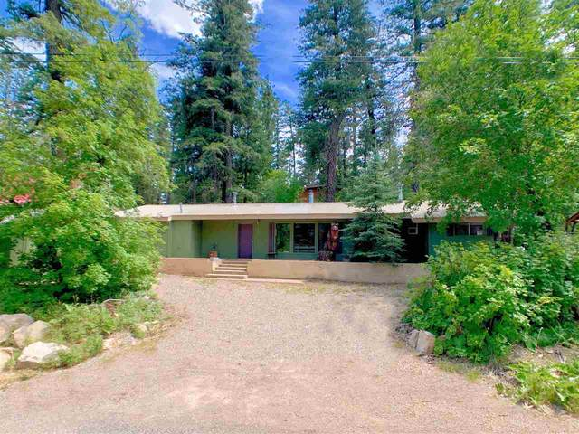 1003 Coyote Ave #3, Cloudcroft, NM 88317 (MLS #162669) :: Assist-2-Sell Buyers and Sellers Preferred Realty