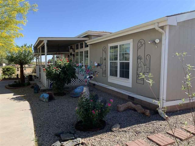 10 Polar Bear Dr, Tularosa, NM 88352 (MLS #162684) :: Assist-2-Sell Buyers and Sellers Preferred Realty