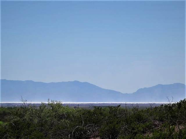 2 Mira Vista Trl, La Luz, NM 88337 (MLS #162695) :: Assist-2-Sell Buyers and Sellers Preferred Realty