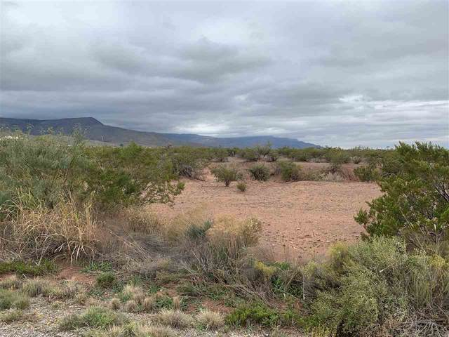 Address Not Published, La Luz, NM 88337 (MLS #162735) :: Assist-2-Sell Buyers and Sellers Preferred Realty