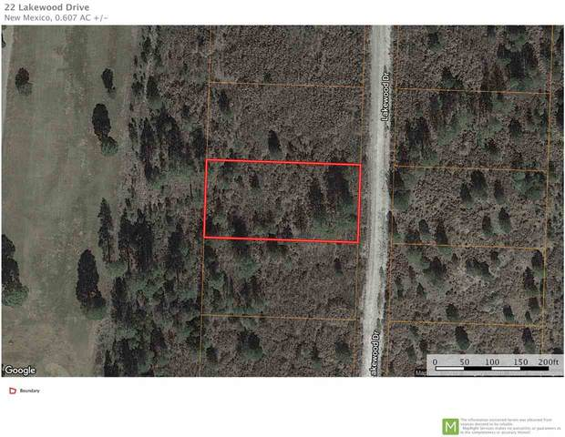 22 Lakewood Dr Gc2, Timberon, NM 88350 (MLS #162766) :: Assist-2-Sell Buyers and Sellers Preferred Realty