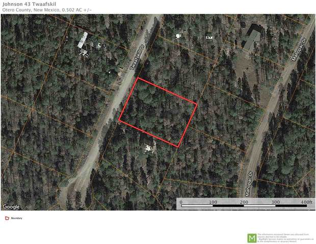 43 Twaafskill Dr #10, Timberon, NM 88350 (MLS #162805) :: Assist-2-Sell Buyers and Sellers Preferred Realty