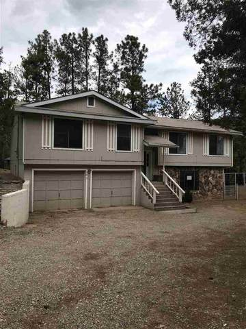 102 Bell Dr, Mayhill, NM 88339 (MLS #162822) :: Assist-2-Sell Buyers and Sellers Preferred Realty