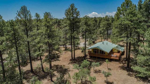 82 Pioneer Dr, Timberon, NM 88350 (MLS #162825) :: Assist-2-Sell Buyers and Sellers Preferred Realty