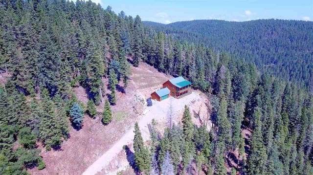 54 Mamaw St, Cloudcroft, NM 88317 (MLS #162844) :: Assist-2-Sell Buyers and Sellers Preferred Realty