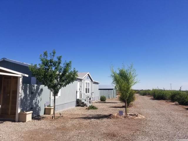 760 Riata Rd, Tularosa, NM 88352 (MLS #162908) :: Assist-2-Sell Buyers and Sellers Preferred Realty