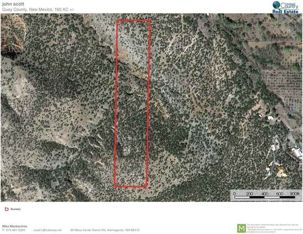 Nogal Canyon Rd, Bent, NM 88315 (MLS #162912) :: Assist-2-Sell Buyers and Sellers Preferred Realty
