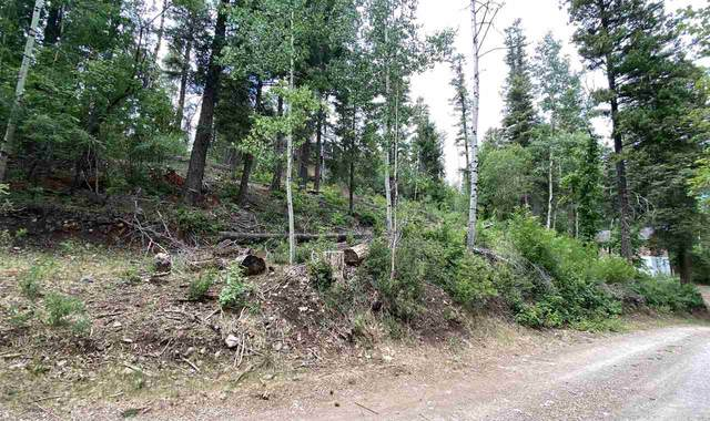 Address Not Published, Cloudcroft, NM 88317 (MLS #162914) :: Assist-2-Sell Buyers and Sellers Preferred Realty