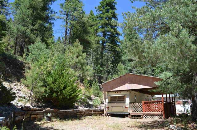 49 Wildwood #3, Cloudcroft, NM 88317 (MLS #162919) :: Assist-2-Sell Buyers and Sellers Preferred Realty