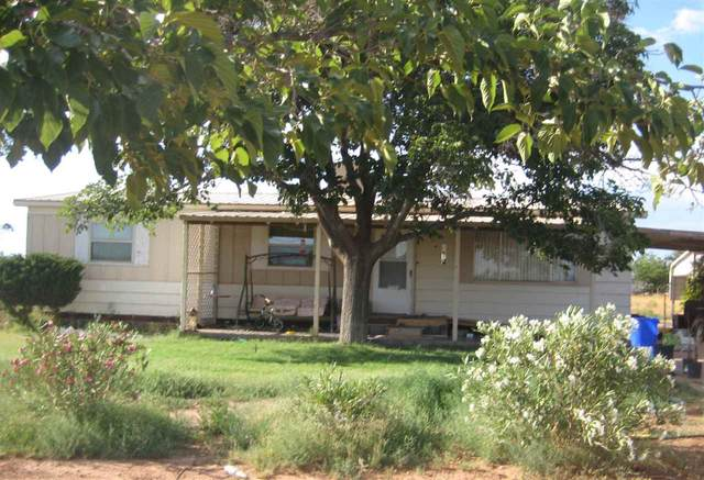 23 La Luz Gate Rd, Alamogordo, NM 88310 (MLS #162997) :: Assist-2-Sell Buyers and Sellers Preferred Realty