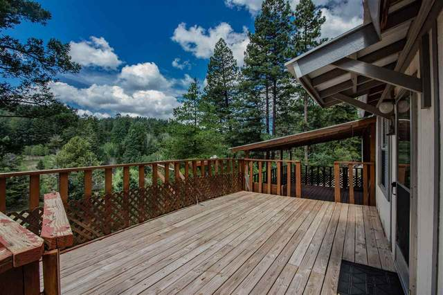 28 Pine Trl #1, Cloudcroft, NM 88317 (MLS #163102) :: Assist-2-Sell Buyers and Sellers Preferred Realty