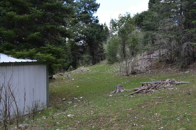 78 Lupine St, Cloudcroft, NM 88317 (MLS #163107) :: Assist-2-Sell Buyers and Sellers Preferred Realty