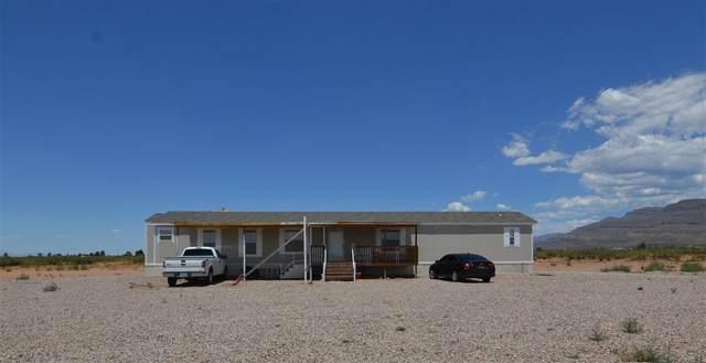 55 Cactus Wren, Alamogordo, NM 88310 (MLS #163113) :: Assist-2-Sell Buyers and Sellers Preferred Realty