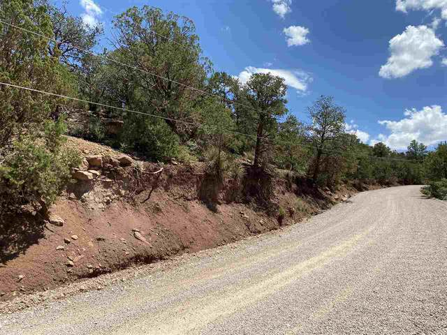 Westside Rd, High Rolls Mountain Park, NM 88325 (MLS #163128) :: Assist-2-Sell Buyers and Sellers Preferred Realty