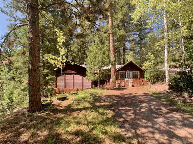 805 Panther Ave #3, Cloudcroft, NM 88317 (MLS #163136) :: Assist-2-Sell Buyers and Sellers Preferred Realty