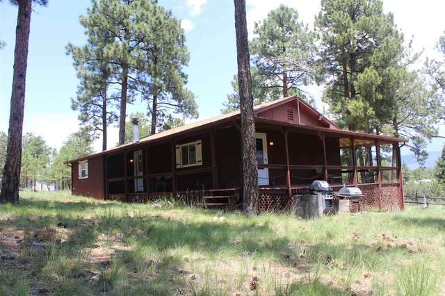 195 Carson Dr T8, Timberon, NM 88350 (MLS #163141) :: Assist-2-Sell Buyers and Sellers Preferred Realty