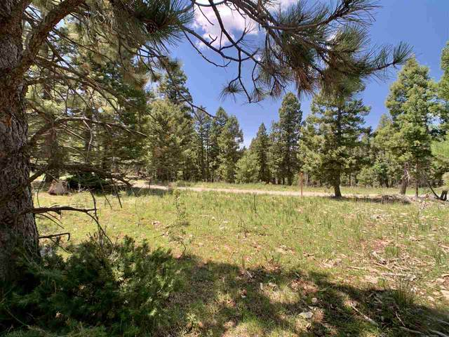 130 Big Dipper Rd, Cloudcroft, NM 88317 (MLS #163143) :: Assist-2-Sell Buyers and Sellers Preferred Realty