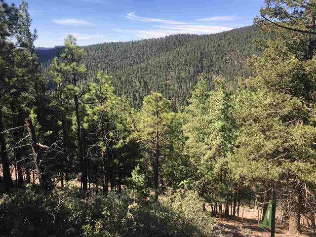 Dark Canyon Rd, Cloudcroft, NM 88317 (MLS #163177) :: Assist-2-Sell Buyers and Sellers Preferred Realty