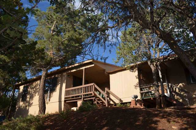 7 Wensel Rd, High Rolls Mountain Park, NM 88325 (MLS #163213) :: Assist-2-Sell Buyers and Sellers Preferred Realty