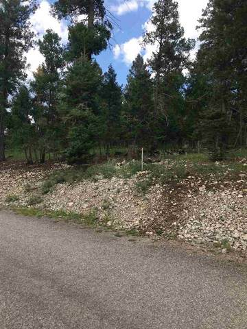 730 Little Bear #3, Cloudcroft, NM 88317 (MLS #163252) :: Assist-2-Sell Buyers and Sellers Preferred Realty