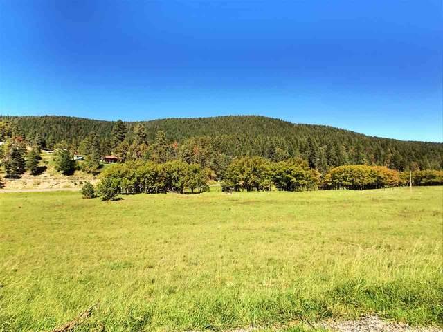 5 Elk Meadows, Cloudcroft, NM 88317 (MLS #163265) :: Assist-2-Sell Buyers and Sellers Preferred Realty