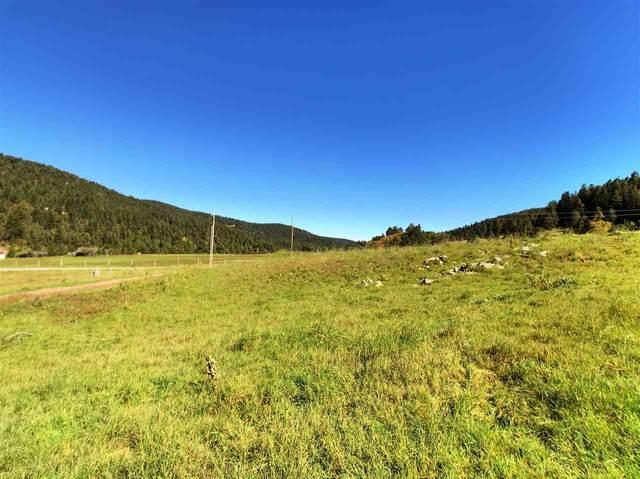 14 Elk Meadows, Cloudcroft, NM 88317 (MLS #163267) :: Assist-2-Sell Buyers and Sellers Preferred Realty
