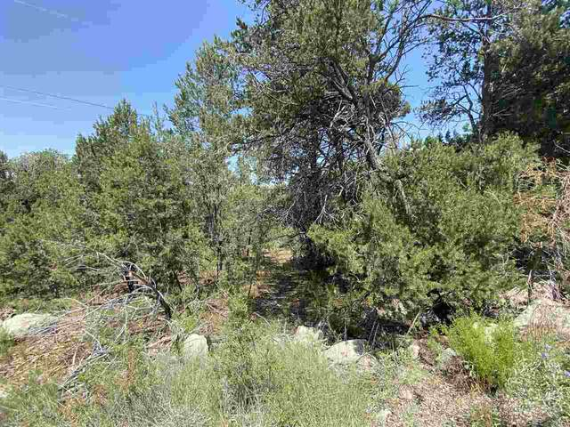 Lot 7A Chupadero Trl, High Rolls Mountain Park, NM 88325 (MLS #163282) :: Assist-2-Sell Buyers and Sellers Preferred Realty