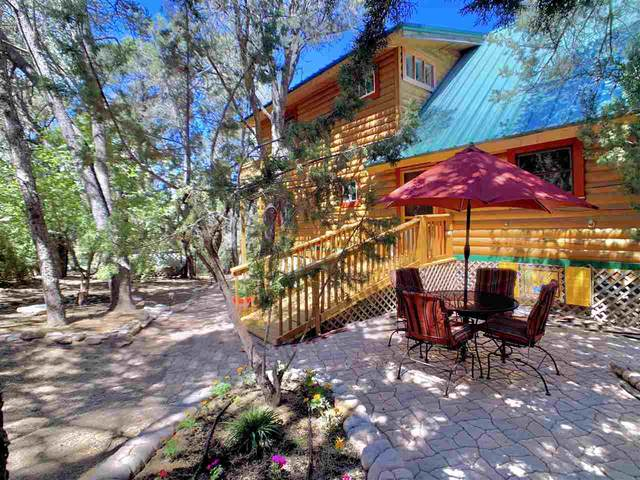 23 Mountain Park Rd, High Rolls Mountain Park, NM 88325 (MLS #163309) :: Assist-2-Sell Buyers and Sellers Preferred Realty