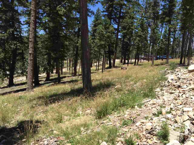 1510 Rainmaker Lp, Cloudcroft, NM 88317 (MLS #163345) :: Assist-2-Sell Buyers and Sellers Preferred Realty
