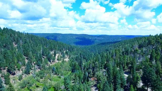 Clear Nite Rd, Cloudcroft, NM 88317 (MLS #163389) :: Assist-2-Sell Buyers and Sellers Preferred Realty