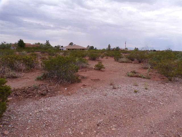 Lot 43 Villa Virginia, La Luz, NM 88337 (MLS #163392) :: Assist-2-Sell Buyers and Sellers Preferred Realty