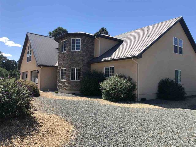 149 Deer Valley Dr, Alto, NM 88312 (MLS #163430) :: Assist-2-Sell Buyers and Sellers Preferred Realty