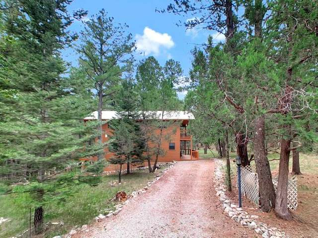 22 Timber Wolf #1, Mayhill, NM 88339 (MLS #163455) :: Assist-2-Sell Buyers and Sellers Preferred Realty