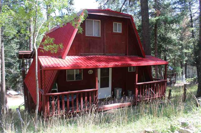 15 N Pine Crest Dr Tfr, Cloudcroft, NM 88317 (MLS #163479) :: Assist-2-Sell Buyers and Sellers Preferred Realty