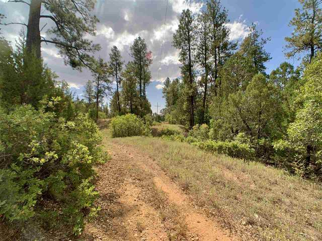 329 Pounds Rd, Timberon, NM 88350 (MLS #163490) :: Assist-2-Sell Buyers and Sellers Preferred Realty
