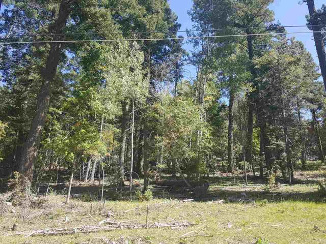 12 Woodlands Way, Cloudcroft, NM 88317 (MLS #163496) :: Assist-2-Sell Buyers and Sellers Preferred Realty