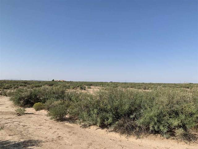 Address Not Published, Alamogordo, NM 88310 (MLS #163537) :: Assist-2-Sell Buyers and Sellers Preferred Realty